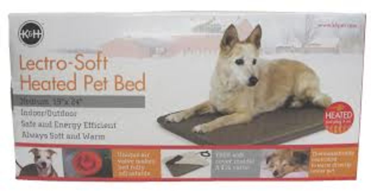 Headline for winter warming pads for pets