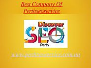 seo consultants perth | google adwords management services