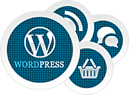 Wordpress developer | Hire Wordpress Developer | Wordpress Designer