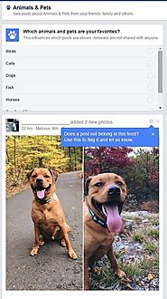 Facebook Tests Topic-Based Feeds