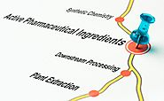 Feature of Active Pharmaceutical Ingredients in Medication Manufacturing