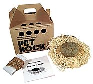 PET ROCK with walking leash