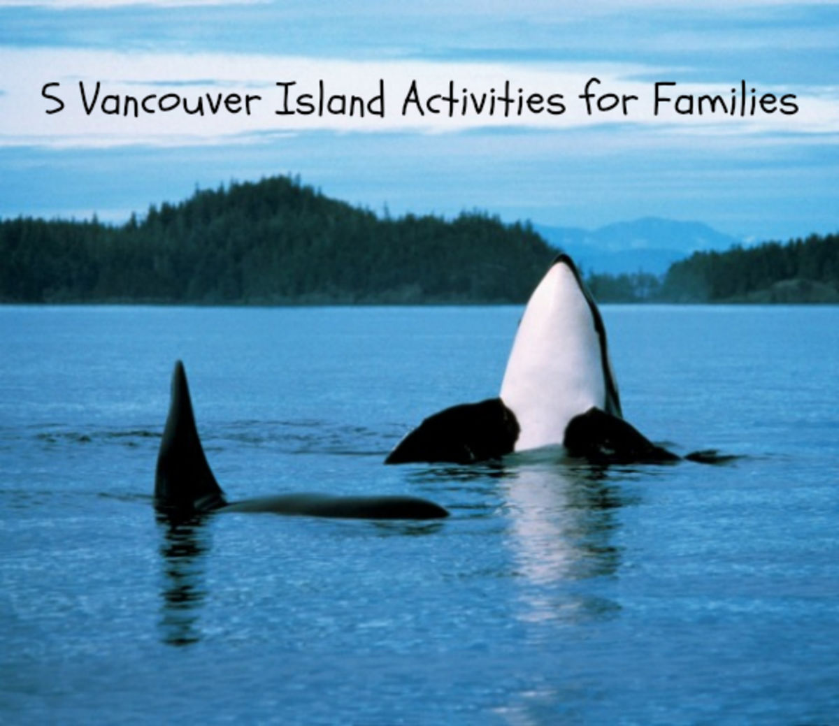 Headline for 5 Vancouver Island Activities for Families