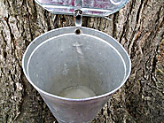Bronte Creek Provincial Park Maple Syrup Festival