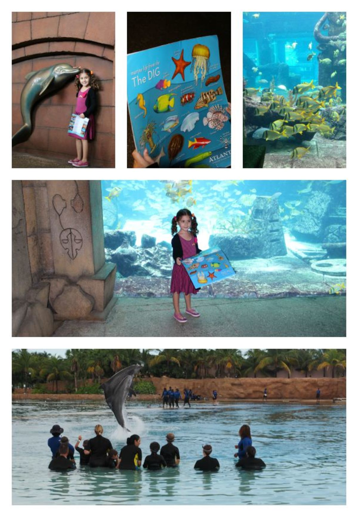 Headline for 5 Things to Do on Nassau Paradise Island with Kids in the Bahamas