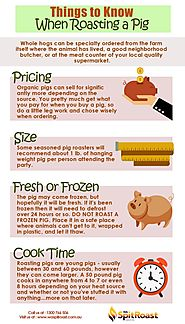 Things to Know When Roasting a Pig