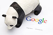 A Google Webmaster Analyst Explains Panda