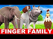 Finger Family Song - Birds and Animals Singing Baby Songs - Finger Family Songs for Babies