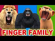 Finger Family - Lion, Gorilla, Tiger Singing Rhymes for Children - Finger Family Children Songs