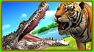 Tiger Finger Family Rhymes | Tiger Vs Crocodile Animal Fights | Animal Finger Family Videos for Kids