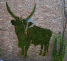 Moss Graffiti: Guerrilla Marketing at Its Greenest