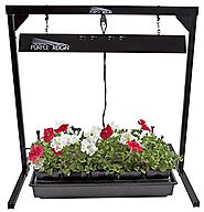 Apollo Horticulture Purple Reign 2' Foot 2 Bulb 24W 6400K T5 Grow Light System for Plant Growing