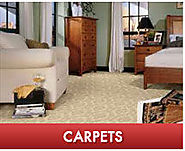 Carpet Cleaning and Water Damage Service in Overland Park