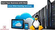 Start Your Business with Best Linux Web Hosting Services