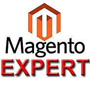Work with Perfect Magento Experts Developer and also Developer for Best Magento Growth Services