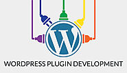 Must-know things for Every WordPress Plugin Developer