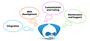 Get Drupal Customization Services for Your Application