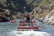 Cruise the Rivers on a Jet Boat