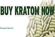 The Best Places to Buy Kratom