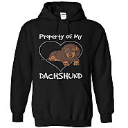 Dachshund t-shirts and hoodies
