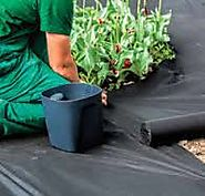 garden soil brisbane prices