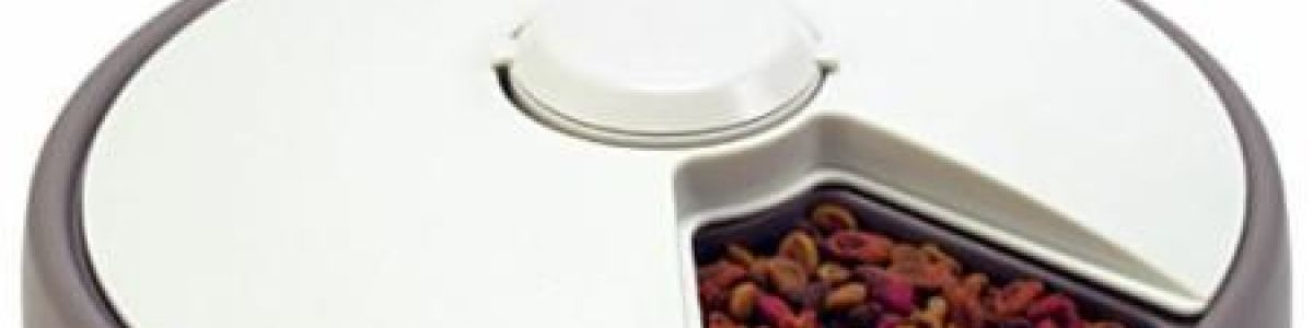 Headline for Top 10 Best Automatic Dog Feeders Reviews