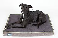 "First-Quality 6"" Thick Orthopedic Dog Bed 