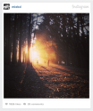Introducing Instagram Web Embeds