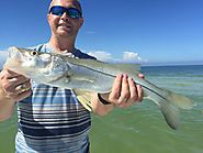 Most Enjoyable Fishing Trip in Tampa Bay FL