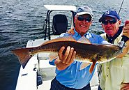 Fishing Report Tampa Bay