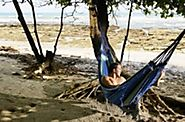Best Lighweight Camping Hammocks Reviews 2016 Powered by RebelMouse