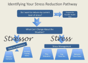 The concept of Stress Reducing Homes
