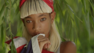 "Melodic Chaotic's ""Summer Fling"": Watch The Debut Video By Willow Smith's New Project"