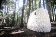 World's First 3D Printed Architectural Structure