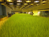 These Office Workers Can Tend Crops While They're In Boring Meetings