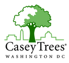 Casey Trees Blog