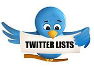 How to find the best twitter lists in your niche