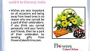 Buy Flowers and Teddy Combo Online and Send it to Cuttack