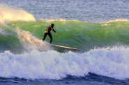 Content Marketing: Riding the Wave