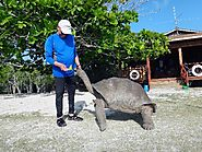 Visiting the Aldabra atoll
