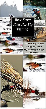 Best Trout Flies For Fly Fishing