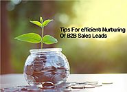 3 Tips For efficient Nurturing Of B2B Sales Leads