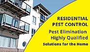 Pest Control Dublin | Residential & Commercial | Mice, Rats, Flies, Ants...