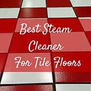 Best Steam Cleaner For Tile Floors To Remove Bacteria.