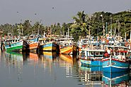 Fishing Harbour of Negombo