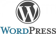 WordPress SEO Results