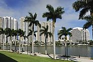 City Sightseeing Miami