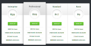 WordPress › Pricing Table