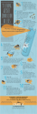 11 Leading Website Conversion Killers [INFOGRAPHIC] | Feldman Creative