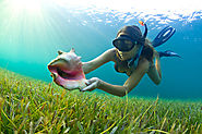 Best Snorkel Mask And Fins Reviews 2016 (with images) · app127